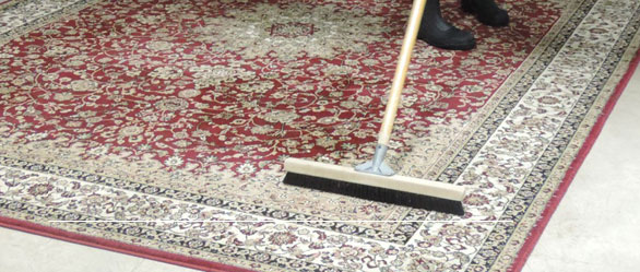 Carpet Cleaning Idea