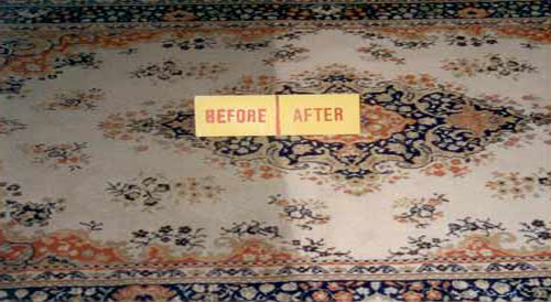 carpet cleaning, carpet cleaning services, carpet cleaning companies, carpet shampoo, cheap carpet cleaners, cheap carpet cleaning, best carpet cleaning companies, best carpet cleaning service , carpet cleaner company, carpet cleaner service, residential carpet cleaning, cheap carpet cleaning services, carpet cleaning business, affordable carpet cleaning, best carpet cleaner company, carpet shampoo service, clean carpet service, the carpet cleaning company, residential carpet cleaners, carpet care, top rated carpet cleaning companies, local carpet cleaning companies, residential carpet cleaning company, carpet cleaning places, carpet cleaning specialists, top carpet cleaning companies, carpet washing service, clean carpet company, business carpet cleaning, best carpet cleaner service, residential carpet cleaning service, carpet cleaner business, best rated carpet cleaning companies, carpet cleaning cheap, best residential carpet cleaner, cheap carpet cleaning company, carpet steaming services, carpet shampoo services, carpet cleaning contractors, shampoo carpet cleaner service, carpet cleaner cheap, home carpet cleaning company, carpet cleaning offers , carpet shampoo company, discount carpet cleaning, the best carpet cleaning company, service carpet cleaning, carpet washing company, highest rated carpet cleaning companies, carpet cleaning in, top rated carpet cleaning services, best cheap carpet cleanercarpet cleaning residentialrug shampoo companiesall carpet cleaning, good carpet cleaning companies, companies that clean carpets, cleaning services carpet, carpet cleaning firms, specialist carpet cleaning, shampoo carpet companies, rug shampoo service, reputable carpet cleaning services, cheap carpet cleaner company, carpet shampoo cleaning service, company carpet cleaning, specialist carpet cleaners, serviz carpet cleaning, carpet and cleaning services, shampoo rug, cheap carpet cleaner service, carpet cleaning today, carpet removal service, carpet steamer company, best carpet cleaning method, carpet cleaners in the area, cleaning of carpets, shampoo carpet cleaning companies, carpet spotting, shampoo carpet service, budget carpet cleaning, carpet cleaning for cheap, carpet cleaning kl, all in carpet cleaning, carpet cleaning care